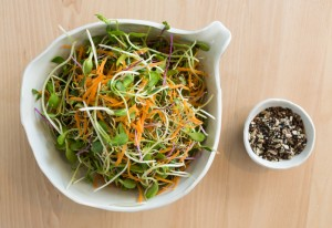 Sprout Salad & Seedy mix